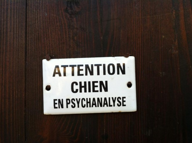 Chien...